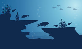 Silhouette of underwater with fish on blue sea. Vector art Royalty Free Stock Images