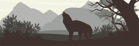 silhouette Vargen kom ut ur den täta skogen och tjuten mot bakgrunden av höga berg vektor illustrationer