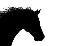 Silhouette + VECTEUR de tête de cheval Image libre de droits