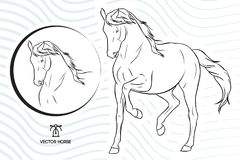 Silhouette vector horse walking show - plus a horse face within a circle - With a vector waves background. Silhouette vector horse walking show - plus a horse Royalty Free Stock Photo