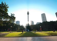 The silhouette view of Sydney tower at Sunset time from St Mary`s Cathedral church. stock photography