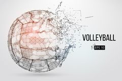 Silhouette of a volleyball ball. Vector illustration. Stock Photos