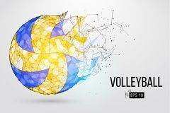 Silhouette of a volleyball ball. Vector illustration. Silhouette of a volleyball ball. Dots, lines, triangles, text, color effects and background on a separate
