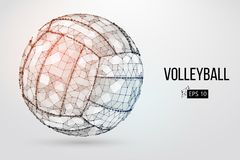 Silhouette of a volleyball ball. Vector illustration. Stock Photography