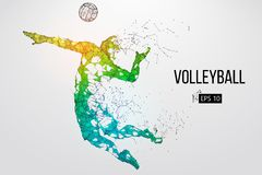 Silhouette of volleyball player. Vector illustration. Silhouette of volleyball player. Dots, lines, triangles, text, color effects and background on a separate