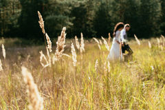 Silhouette of walking bride and groom on field Stock Photography