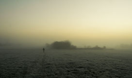 Silhouette walking in the fog on a frosty field. Silhouette of man walking alone in the fog on a green frosty field at dawn Royalty Free Stock Image