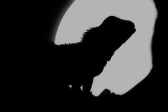 Silhouette of a Water Dragon Royalty Free Stock Images