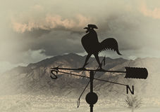 Silhouette of weather vane with a rooster Stock Photography