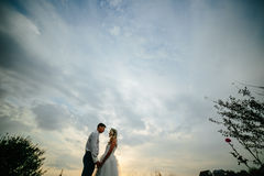Silhouette of  wedding couple in field Royalty Free Stock Photo