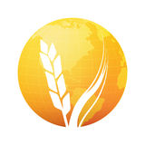 Silhouette of Wheat on background of Gold Planet. Vector Round Illustration of Farm and Agriculture isolated on white background Stock Images