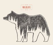 Silhouette wild bear forest wildlife drawn vector. Silhouette of a wild bear with a forest illustration inside, wildlife concept, hand drawn vector illustration Royalty Free Stock Photography