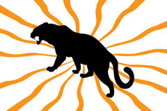 Silhouette of wild cat on orange Stock Photo