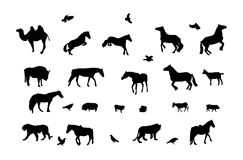 Silhouette of Wild and Domestic Animals, Bird. Stock Images