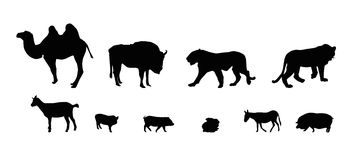 Silhouette of Wild and Domestic Animals. Black & White Royalty Free Stock Photo