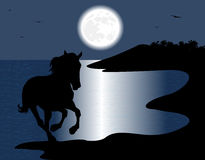 Silhouette of the wild horse Stock Photo