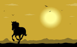 Silhouette of the wild horse Royalty Free Stock Photos