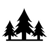 Silhouette wild pines forest tree Stock Photo