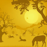 Silhouette of wildlife, animals, trees, sun Royalty Free Stock Image