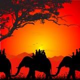 Silhouette of wildlife safari on an elephant royalty free illustration