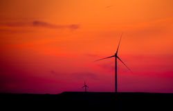 Silhouette of  wind turbines at sunset Royalty Free Stock Images