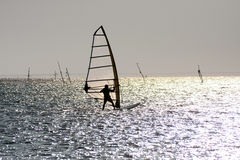 Silhouette of windsurfer. Silhouette of a windsurfer in Vama Veche stock image