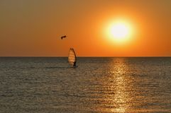 The silhouette of a windsurfer on a board under a sail moves along a calm water surface at sunset over the sea, horizon royalty free stock image