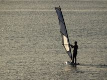 Windsurfing with sunset light royalty free stock image