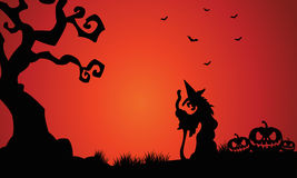 Silhouette of witch and pumpkins Halloween Stock Images