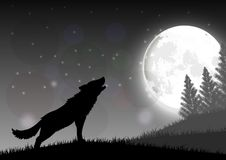 Silhouette of a wolf standing on a hill at night with moon Stock Photography