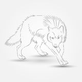 Silhouette of Wolf in Vector Stock Photo
