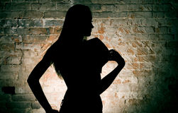 Silhouette of the woman Stock Photography