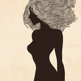 Silhouette of woman with beautiful hair Stock Image