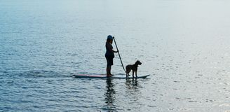 Silhouette woman and dog on standup paddleboard. Stock Images