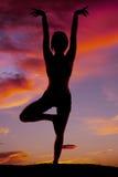 Silhouette woman fitness bird Stock Image