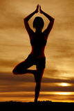 Silhouette woman fitness tree Royalty Free Stock Photography