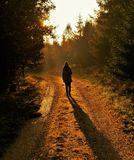 Silhouette of a woman with long shadow on a hiking trail royalty free stock images