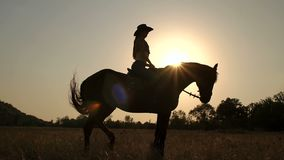 Silhouette of a woman riding a horse at sunset. stock video
