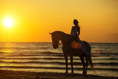 Silhouette of a woman riding a horse on the beach at sunset.  royalty free stock photography