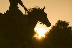 Silhouette of a woman riding a horse - sunset or sunrise, horizontal. Telephoto Royalty Free Stock Photo