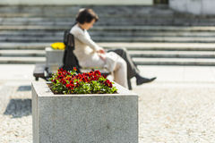 Silhouette of a woman sitting on a bench. Stock Photography