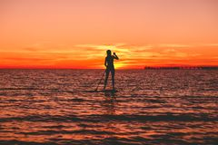 Silhouette of woman at stand up paddle board on a quiet sea with bright sunset or sunrise Royalty Free Stock Photo