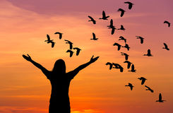 Silhouette Woman Standing Raised Up Hands During Flock Of Lesser Whistling Duck Flying On Sunset Royalty Free Stock Photography