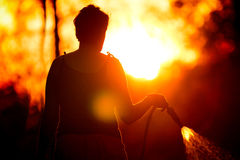 Silhouette of a woman watering grass at sunset royalty free stock photo