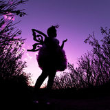 Silhouette of woman wearing butterfly costume. Woman wearing butterfly costume - silhouette twilight - conceptual nature Stock Photo