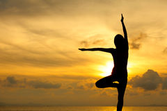 Silhouette of a woman yoga Stock Images