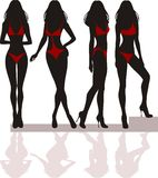 Silhouette of women Stock Image