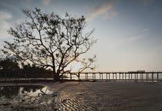 Silhouette Wooden bridge into the sea. Wooden bridge and pier locate at koh mak stock photo