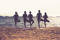 Silhouette of  yoga group of people doing tree pose and namaste Stock Photos