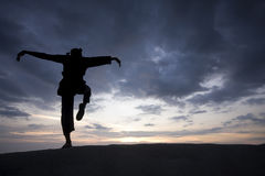Silhouette of young boy performing a pencak silat royalty free stock image